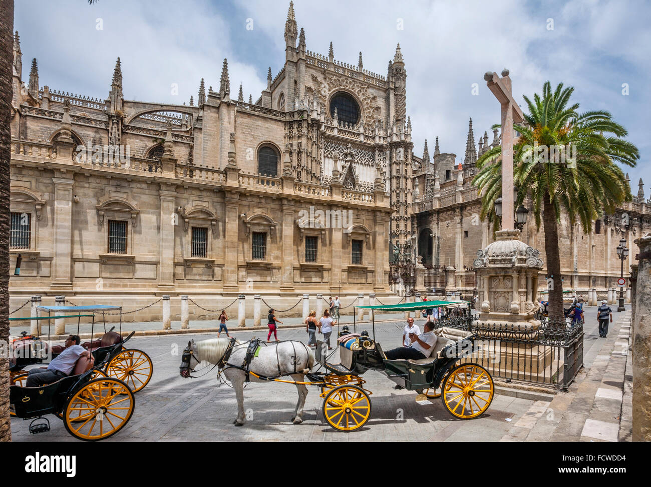 Spain, Andalusia, Province of Seville, Seville, carriages awaiting fares at Seville Cathedral - Stock Image