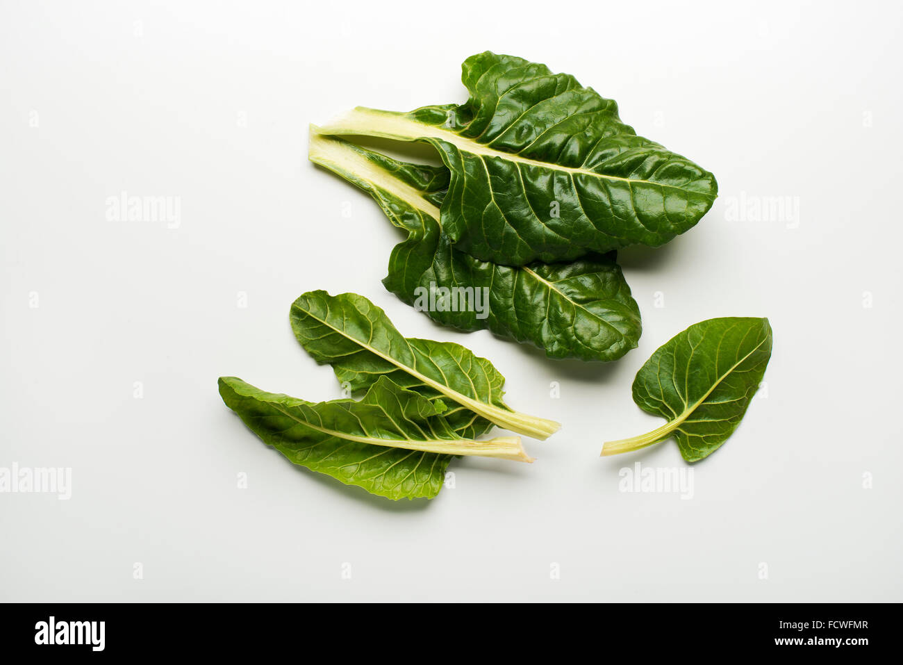 Fresh swiss chard leaves isolated on a white background. - Stock Image