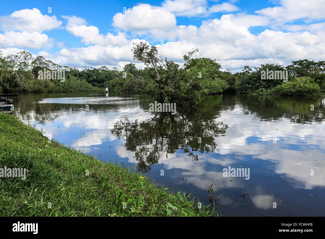 Yacuma river. Bolivian jungle. Amazon region - Stock Image