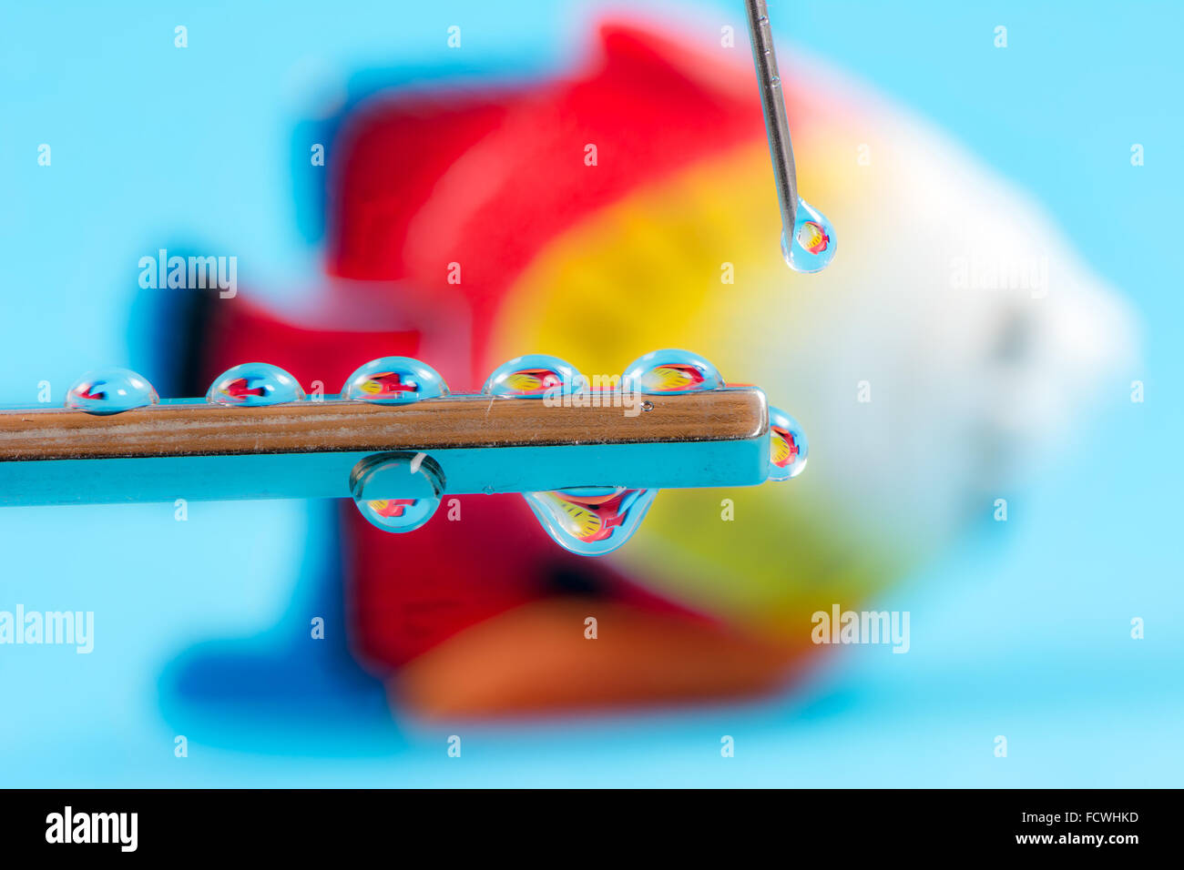 Fish reflections in a drops from a syringe - could be used to illustrate genetic engeneering, cloning or biotechnology - Stock Image