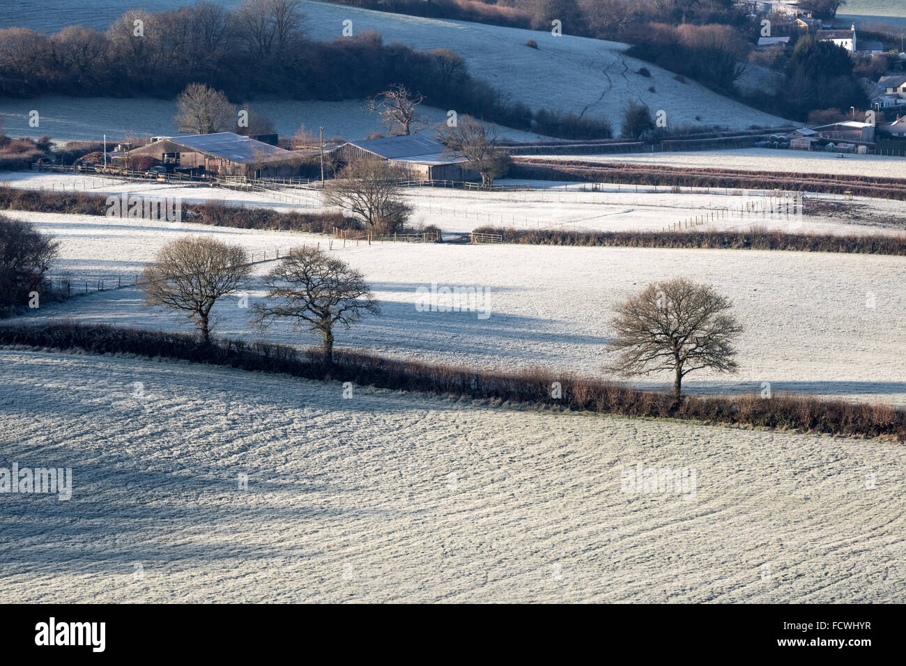 Frosty Torridge Valley: View From Torrington Across the River Valley Towards Taddiport, With Shadows and Hedges. - Stock Image