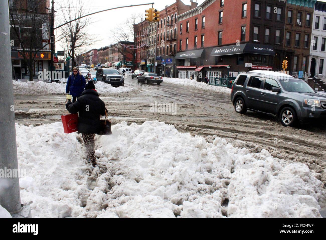 New York, USA. 25th January, 2016. jonas new york snow storm 2016 Credit:  simon leigh/Alamy Live News Stock Photo