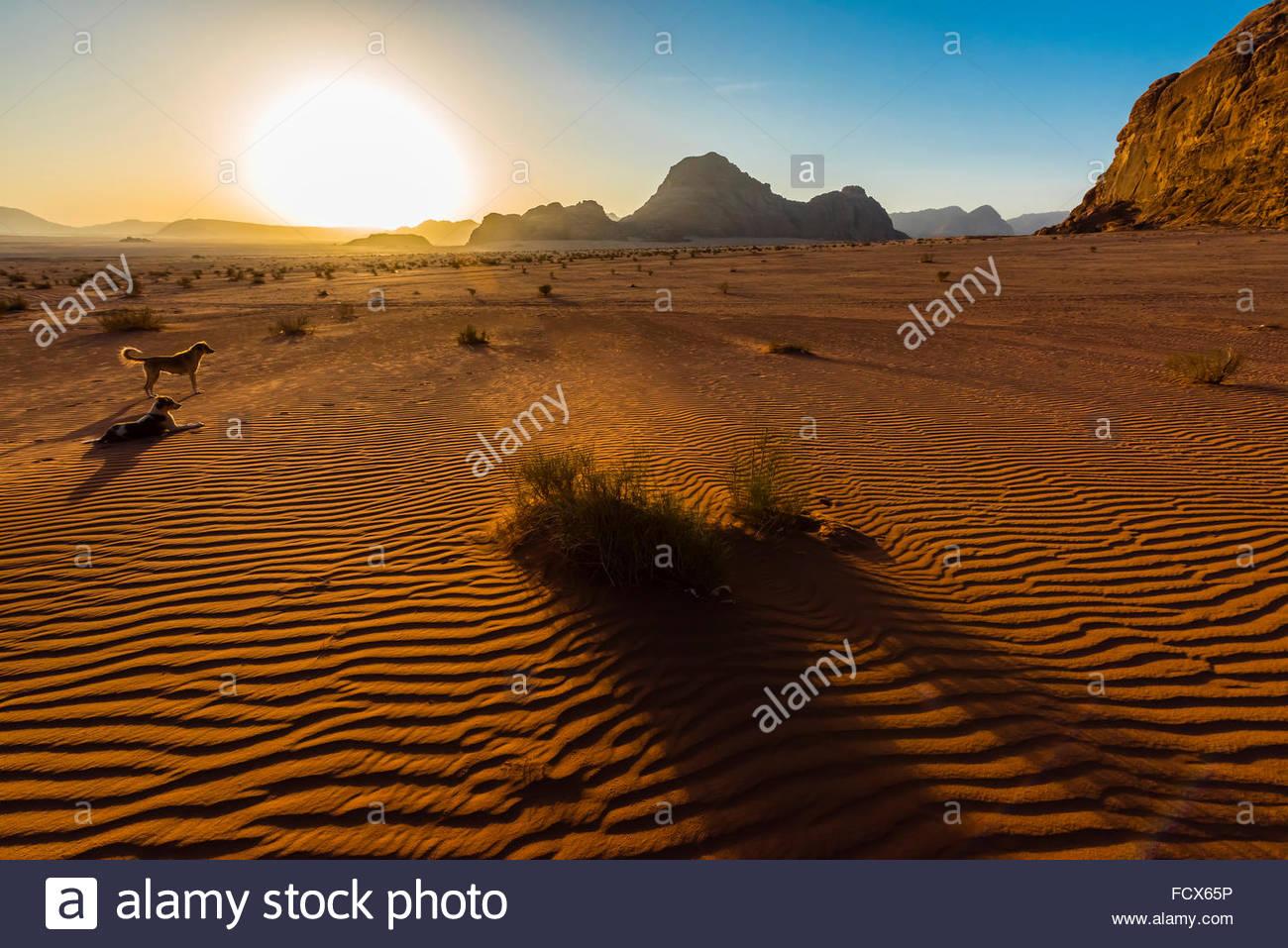 Arabian Desert, Wadi Rum, Jordan. Stock Photo