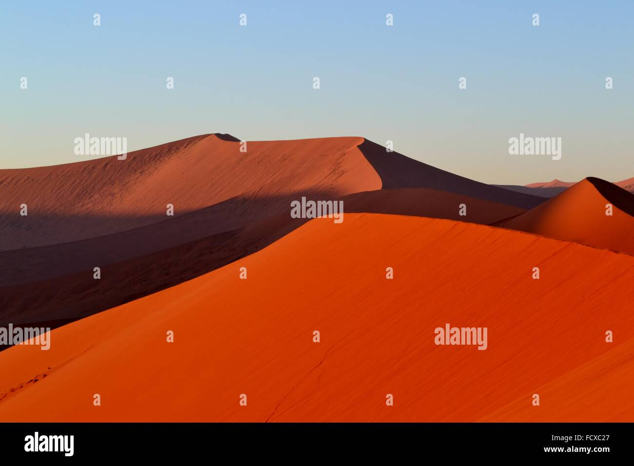 Giant sand dunes at dawn at Sossusvlei, Namibia, Africa - Stock Image