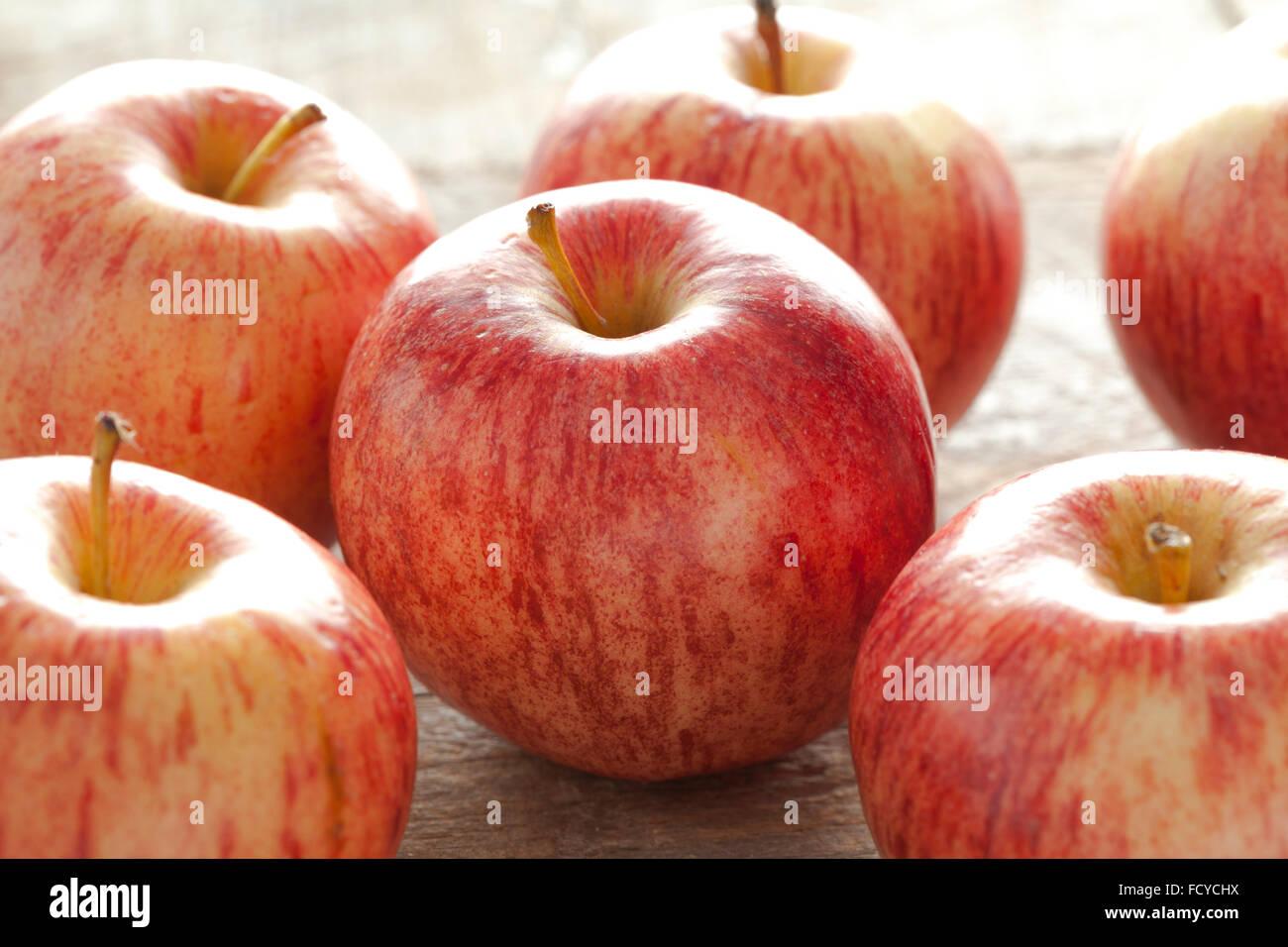 Fresh Royal Gala apples - Stock Image
