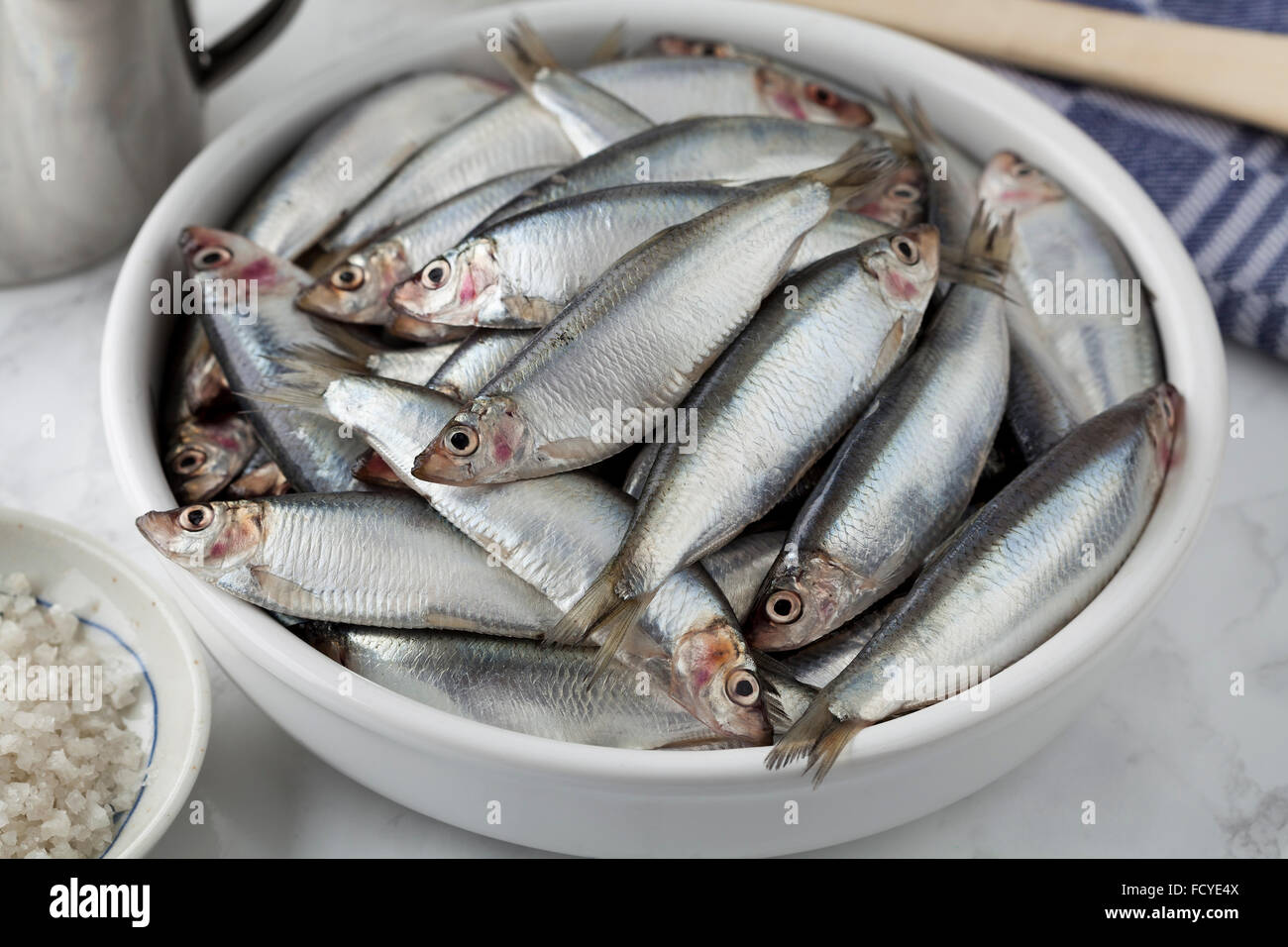 Fresh raw European sprat in a bowl - Stock Image