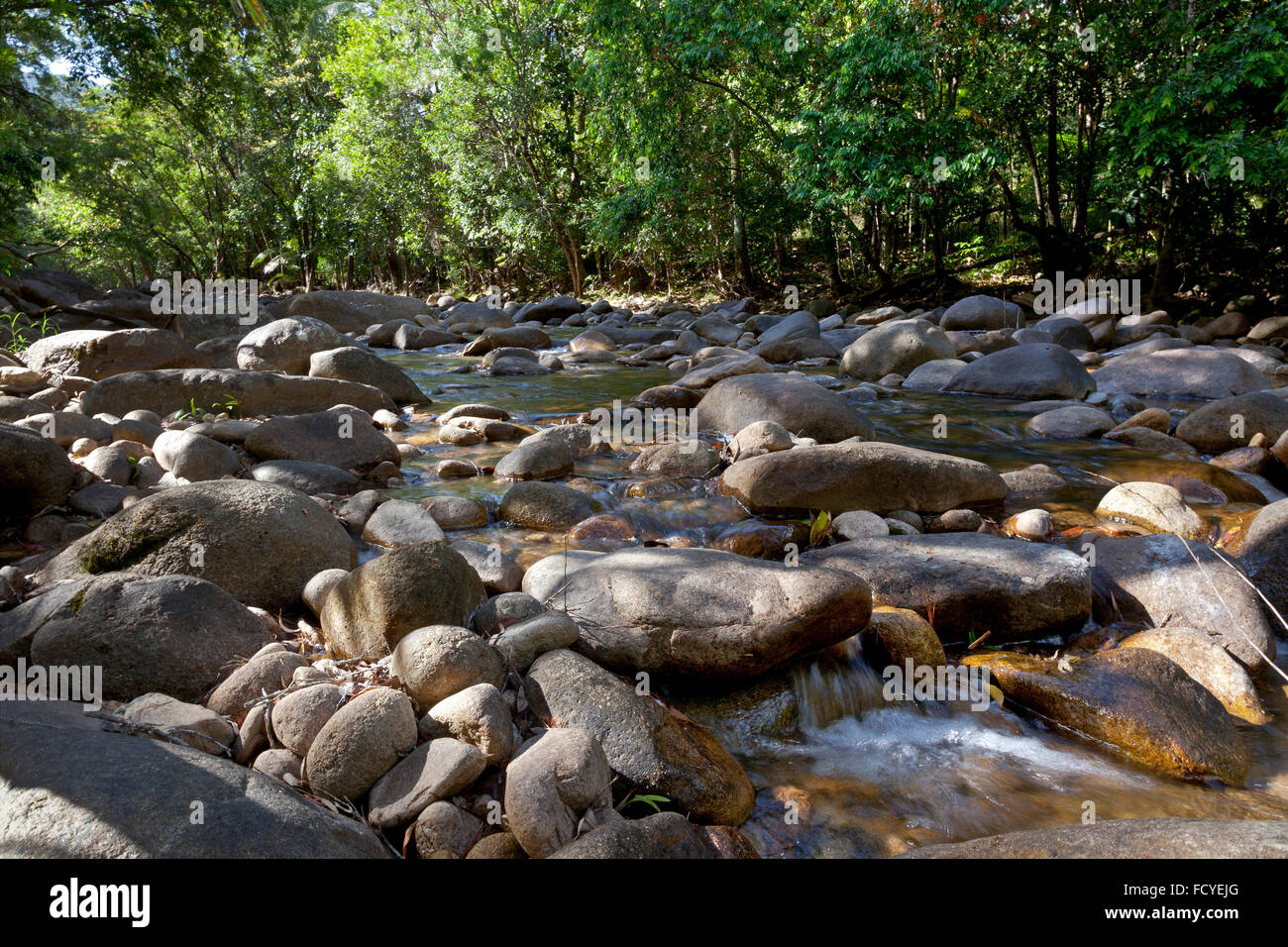 Water and rocks in Finch Hatton gorge, Queensland,Australia - Stock Image