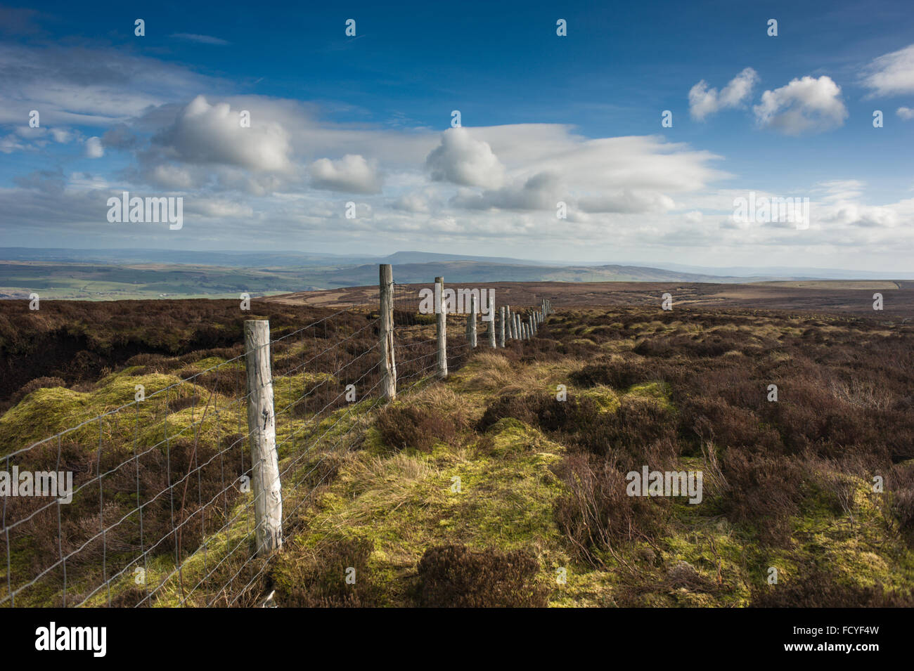 The watershed fence on Baxton Fell in the heart of Bowland - Stock Image