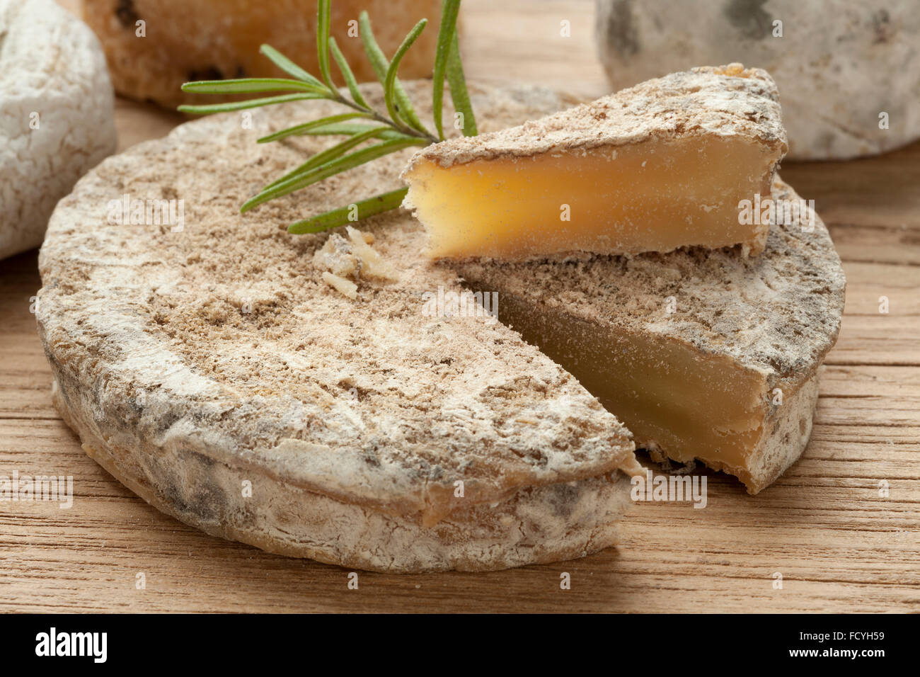 Traditional french goats cheese three weeks old - Stock Image