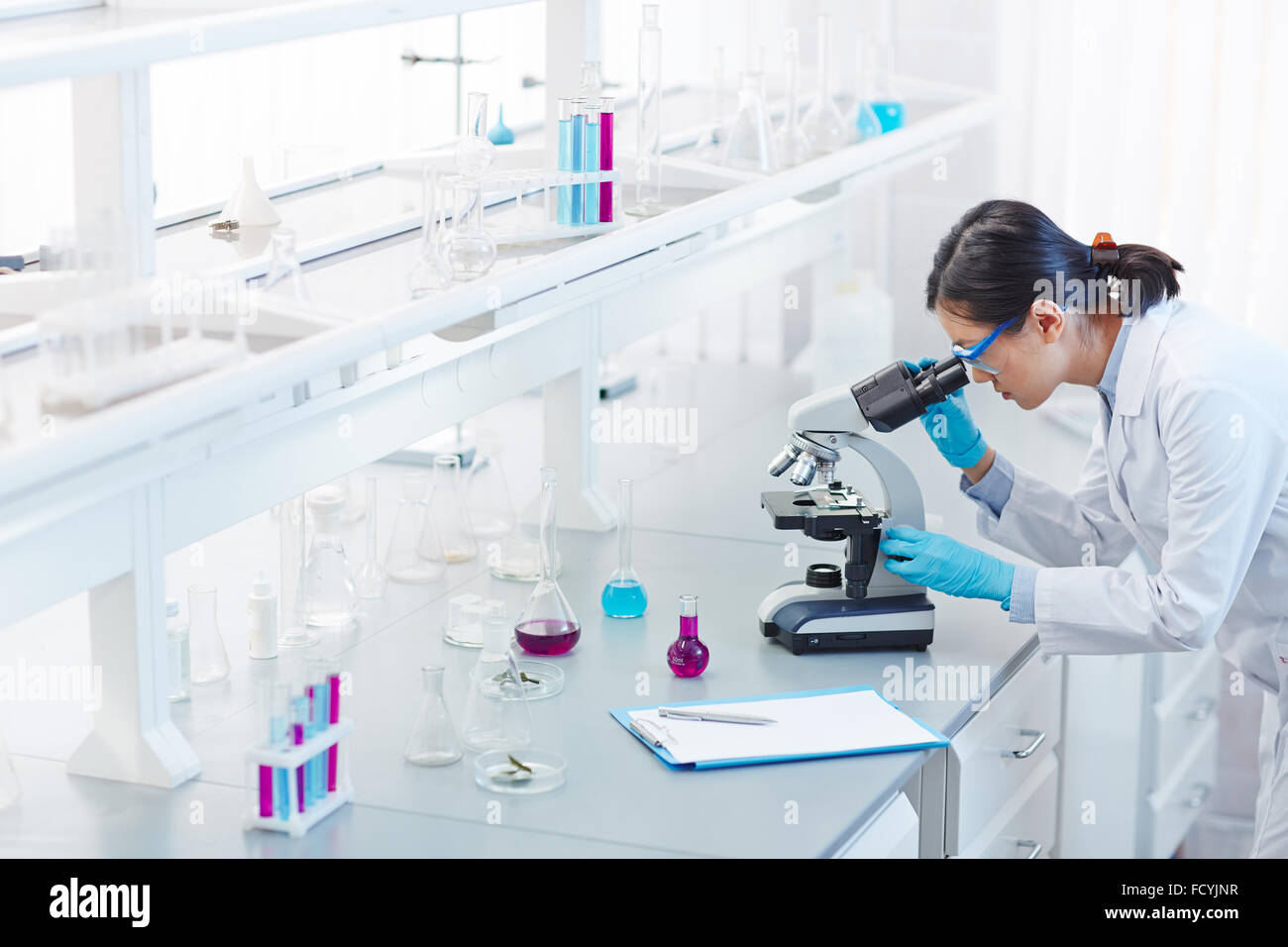 Glassware, microscope and clipboard in scientific laboratory - Stock Image