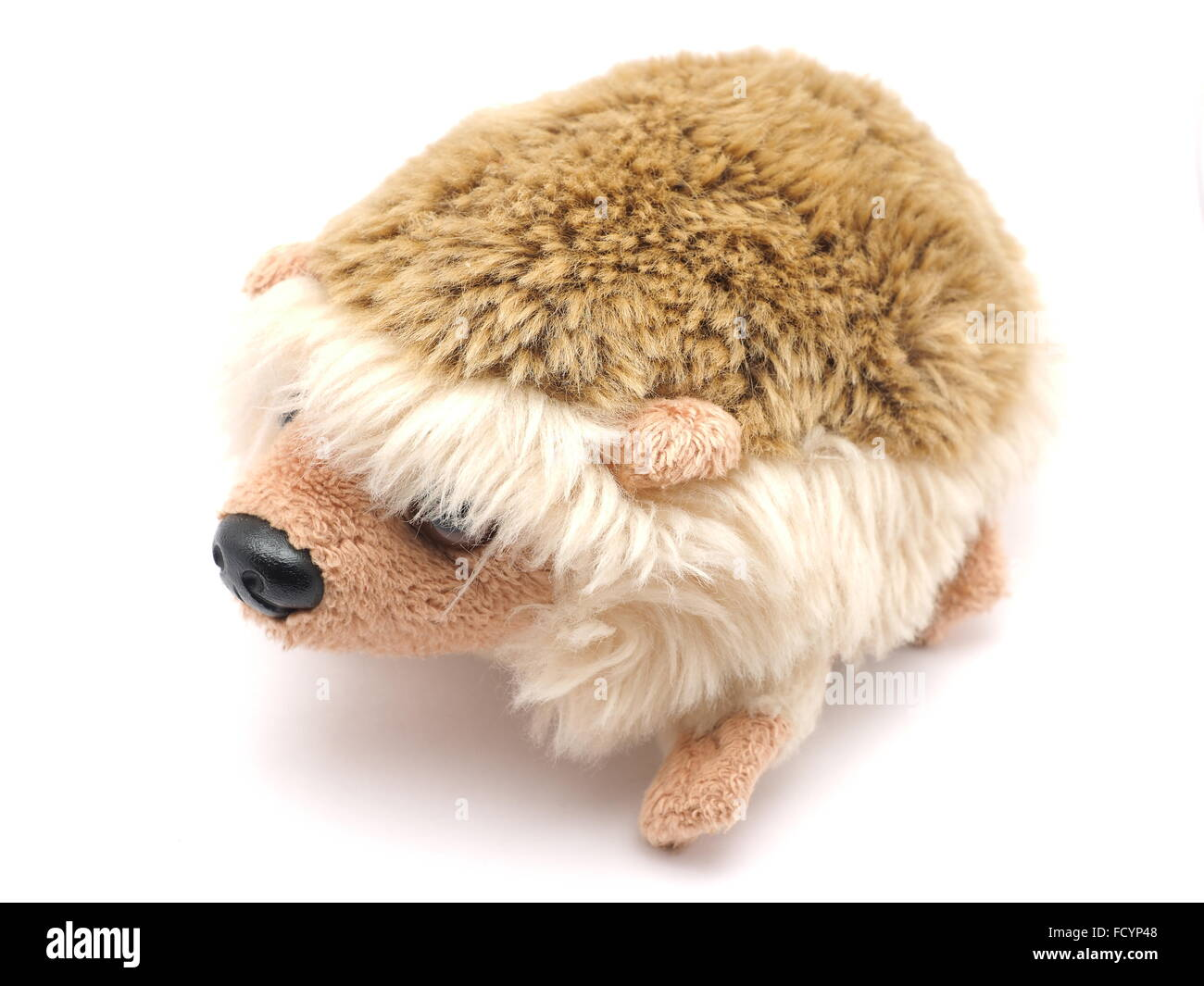 soft toy hedgehog on a white background - Stock Image