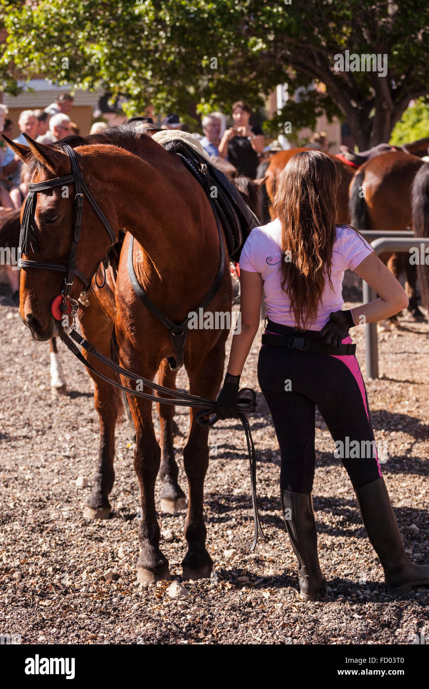 Riders and horses in the corral at the San Sebastian fiesta, La Caleta, Costa Adeje, Tenerife, Canary Islands, Spain. - Stock Image