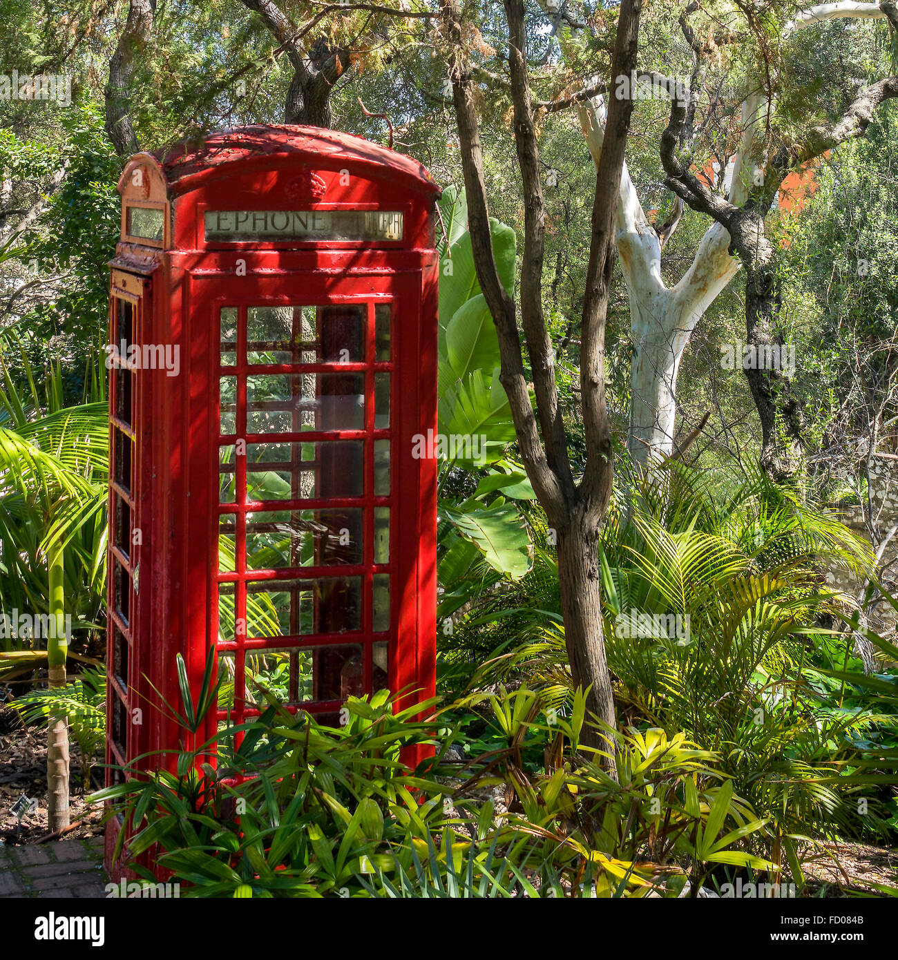 Telephone Box In The Woods Gibraltar - Stock Image