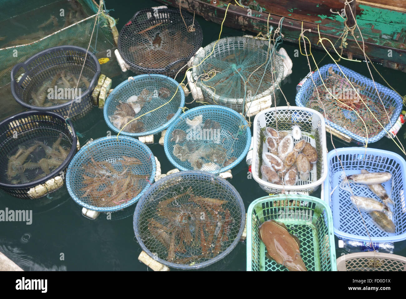 Baskets holding different types of fish and shellfish for sale tethered to a small boat in Halong Bay, Vietnam - Stock Image