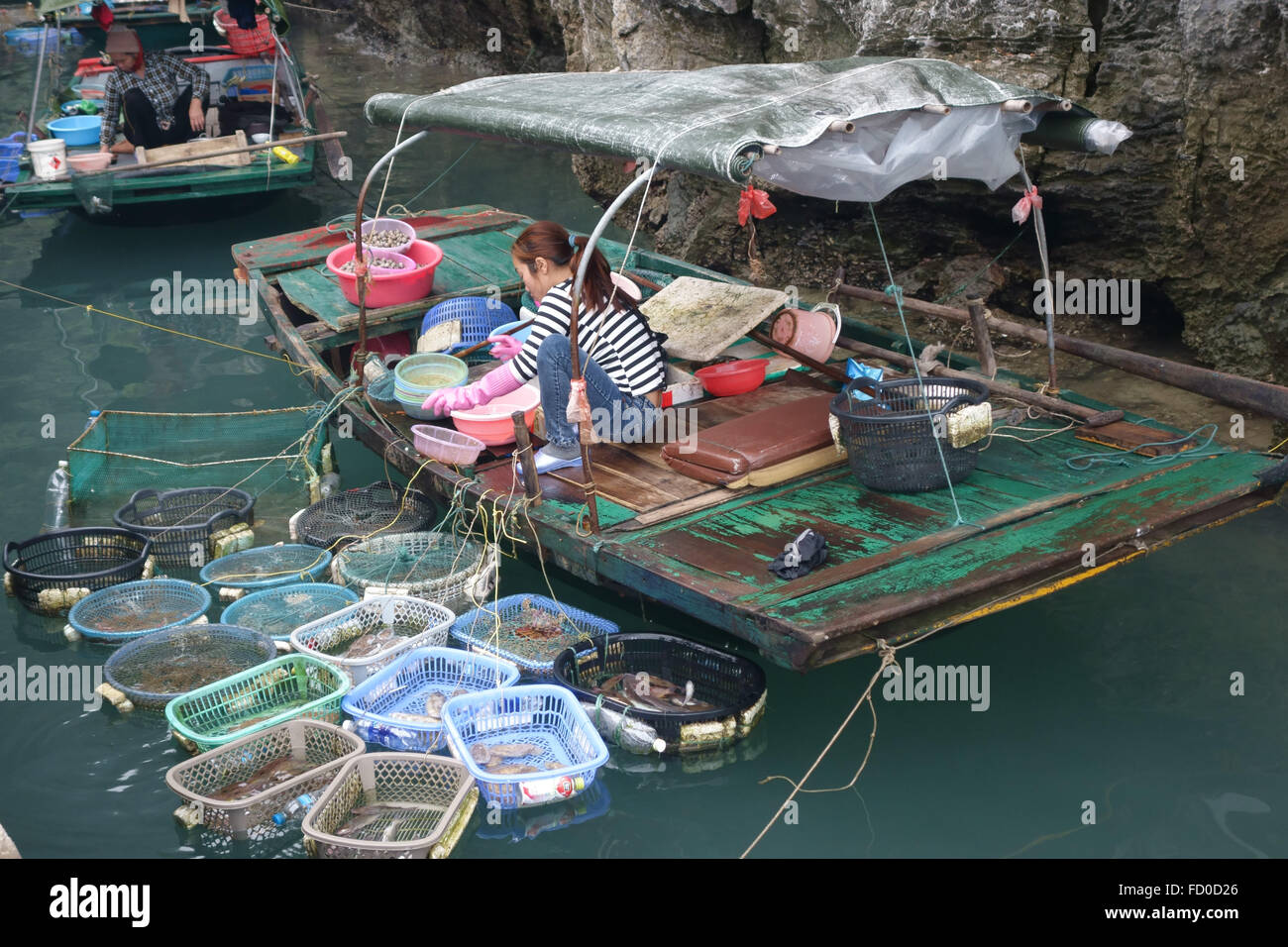 Woman selling different types of live fresh fish and shellfish tethered to a small boat in Halong Bay, Vietnam - Stock Image
