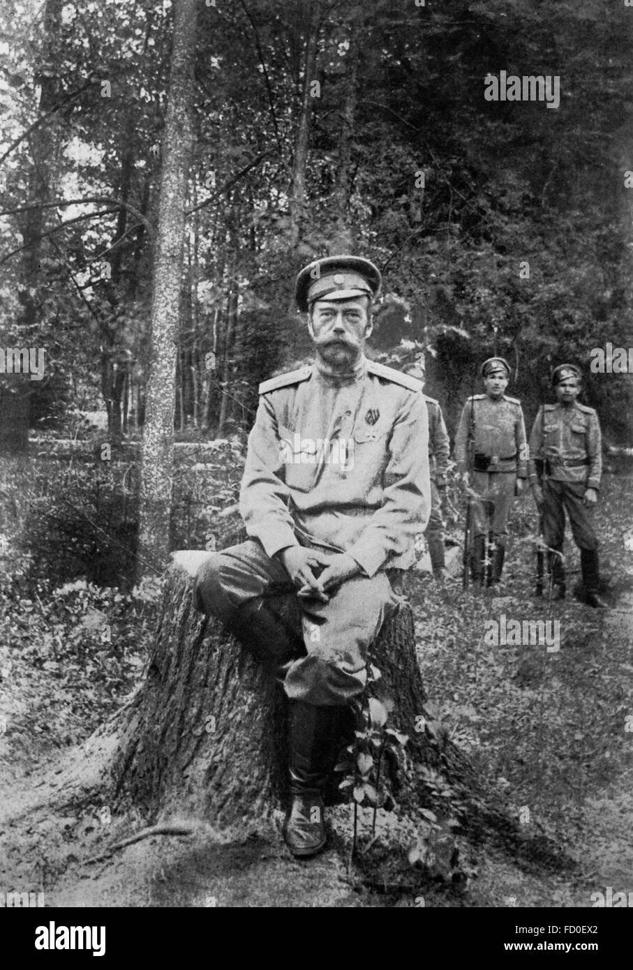 Tsar Nicholas Ii Stock Photos and Images