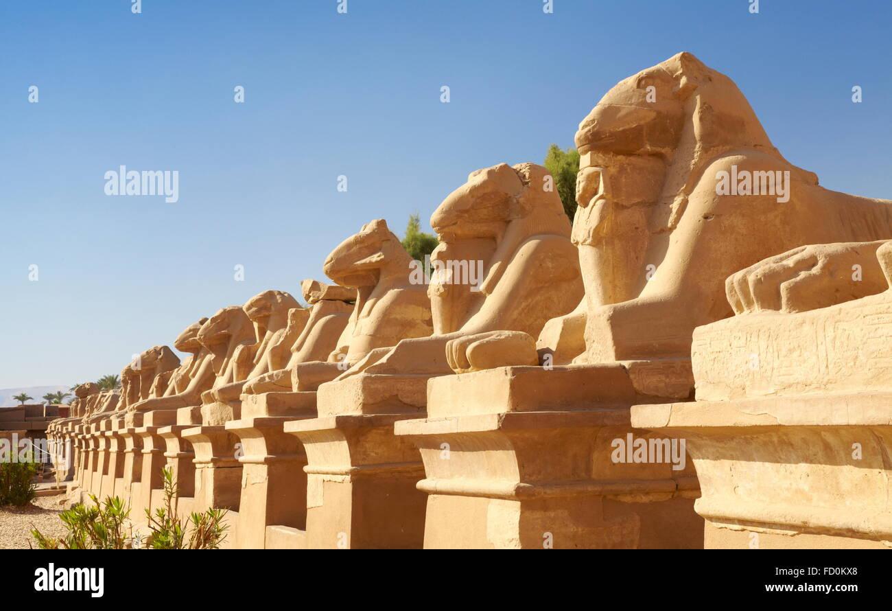 Egypt - Avenue of Rams in Karnak Temple - Stock Image