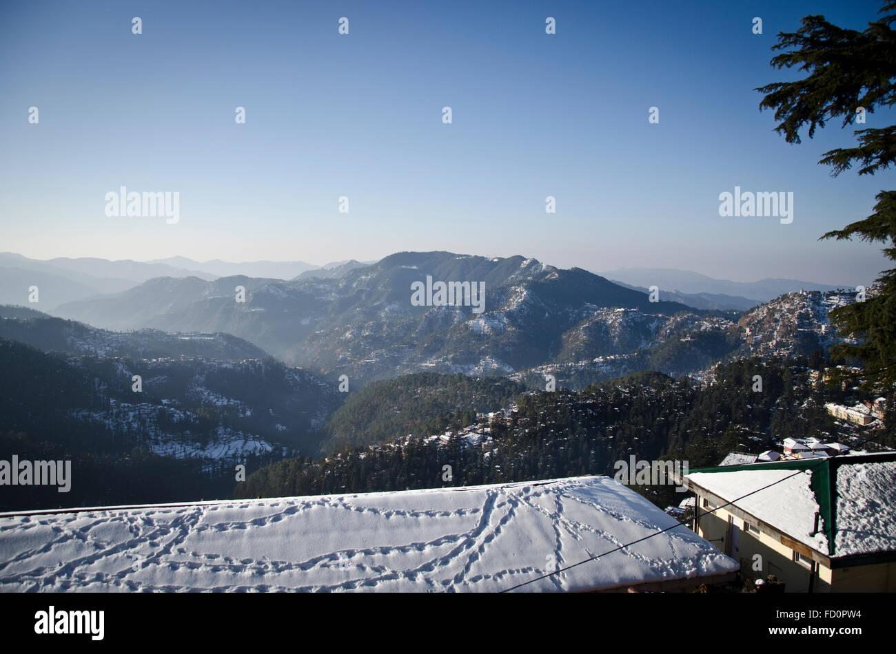 Monkey footprints, Shimla in winter, Himachal Pradesh, India - Stock Image