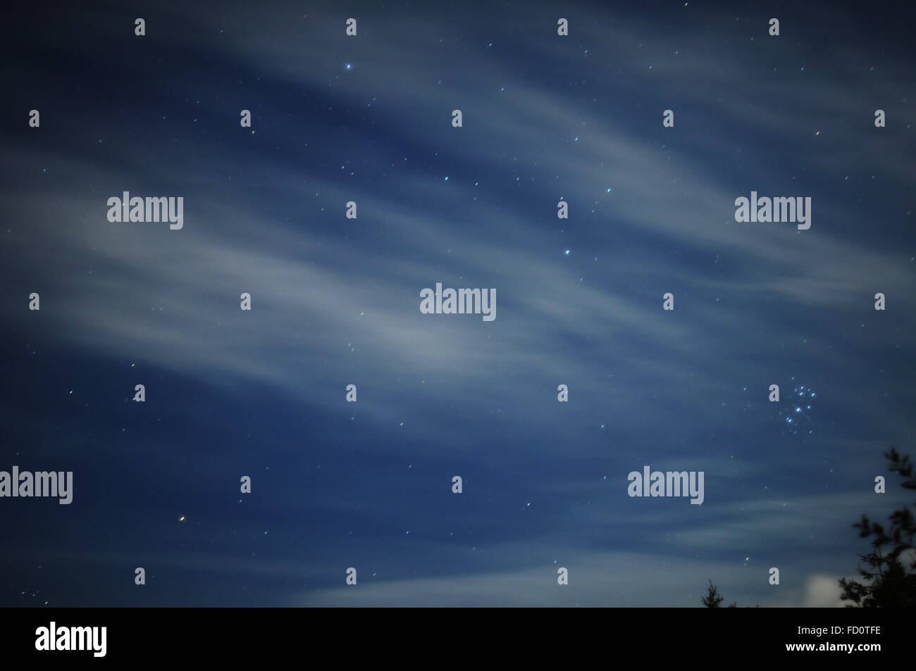 Night sky in Sweden, long exposure with wispy clouds. - Stock Image