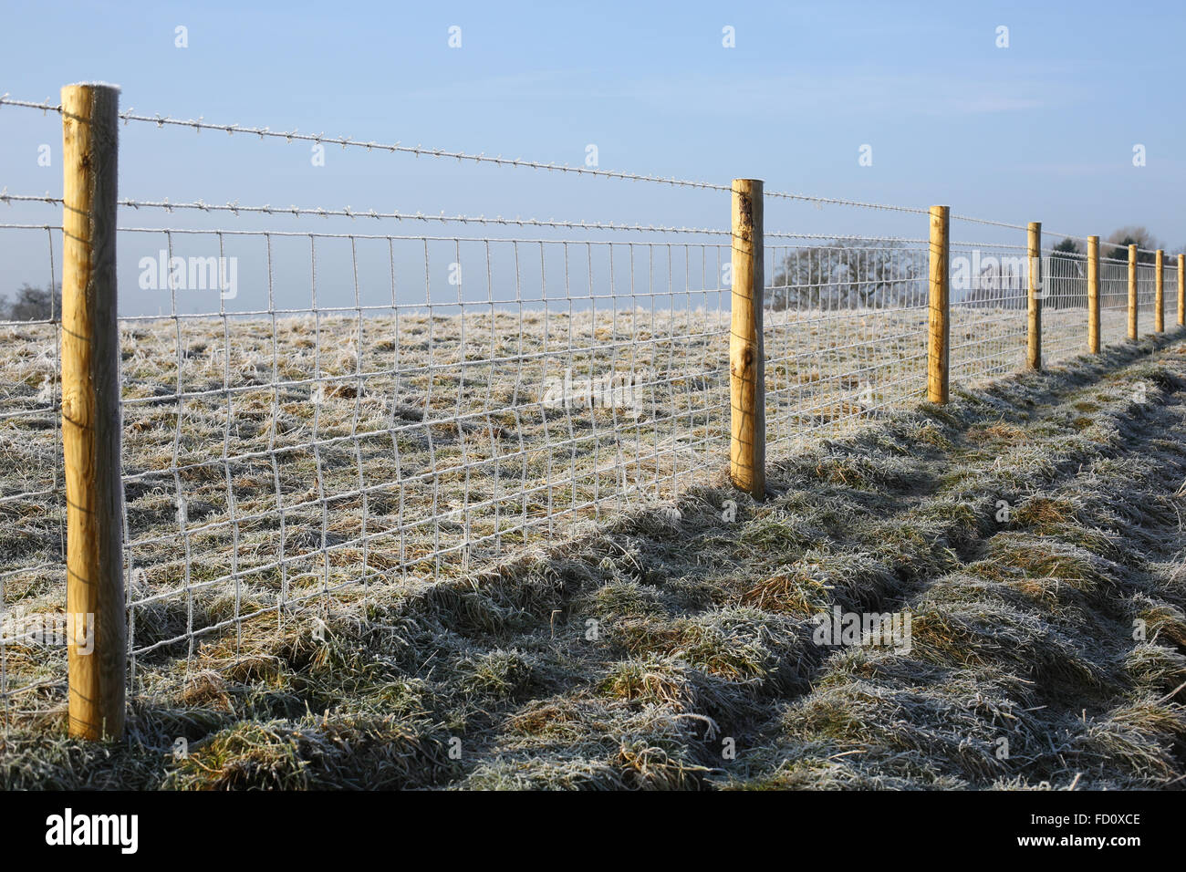 Fence on frosty field in Warwickshire, England, UK - Stock Image