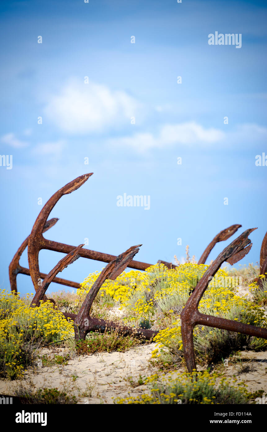 Cemetery of Anchors V - Barrel's Beach - Stock Image