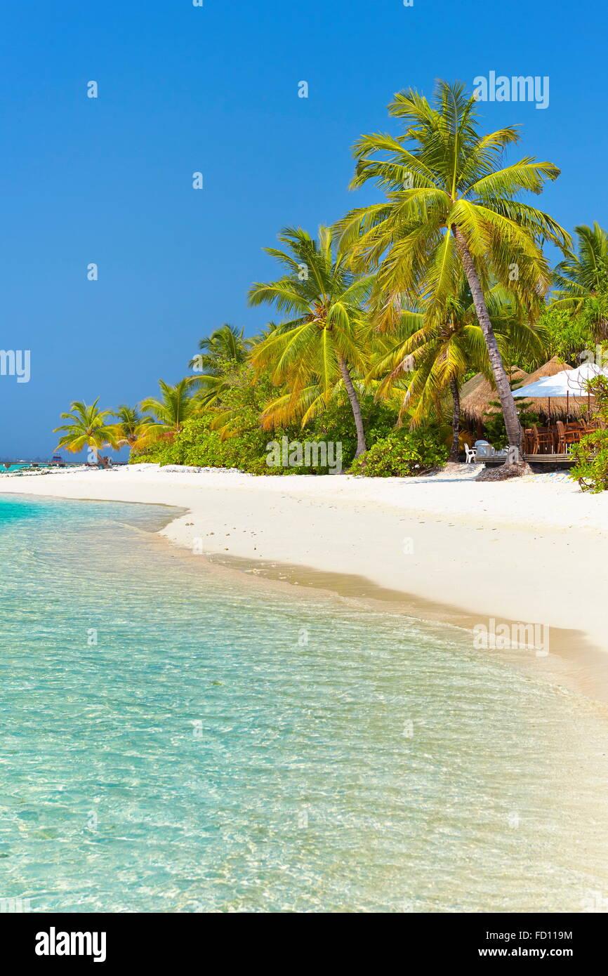 tropical beach at Maldives Island, Ari Atoll - Stock Image
