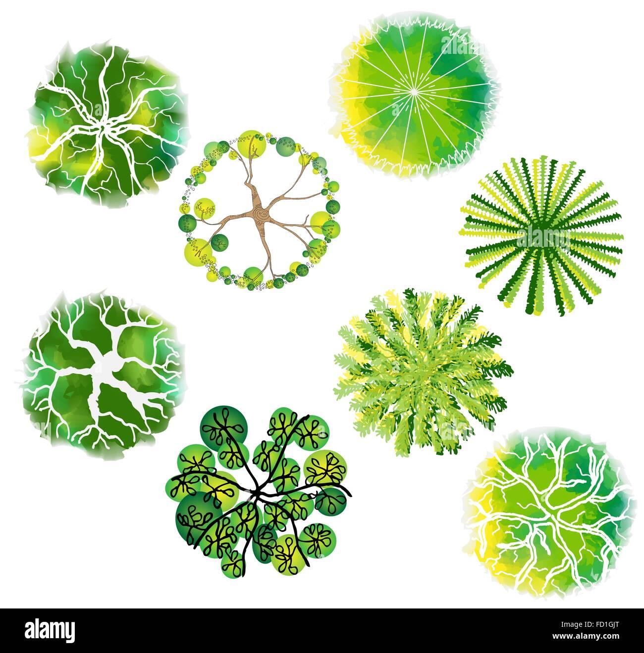 A set of treetop symbols, for architectural or landscape design ...