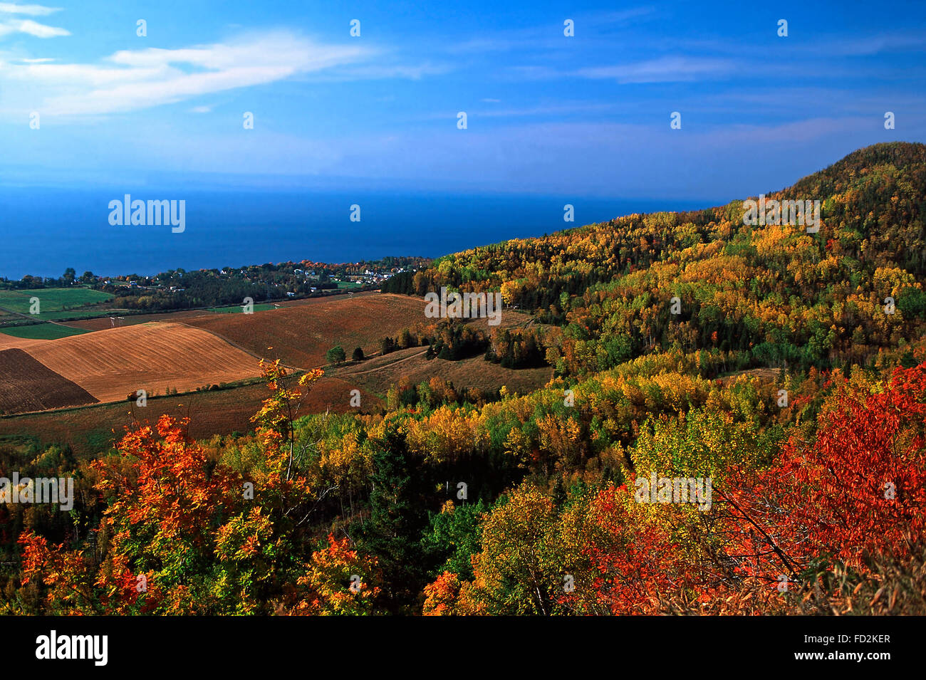 Fall color from atop Mt.Joseph,Gaspe Peninsula,Quebec - Stock Image