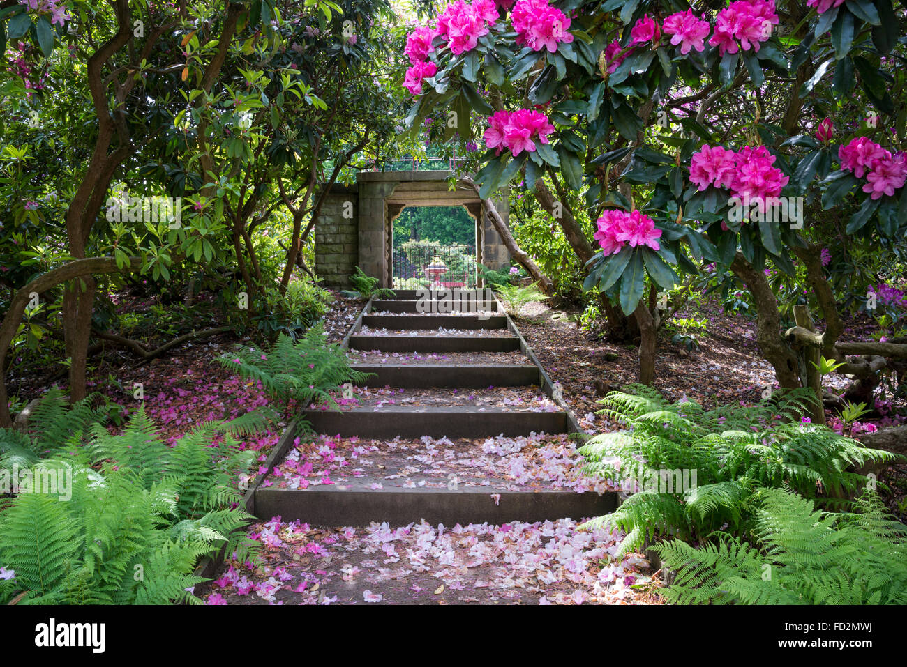 Steps Leading To The Entrance To The Victorian Flower Garden At Wentworth  Castle Gardens, Yorkshire.