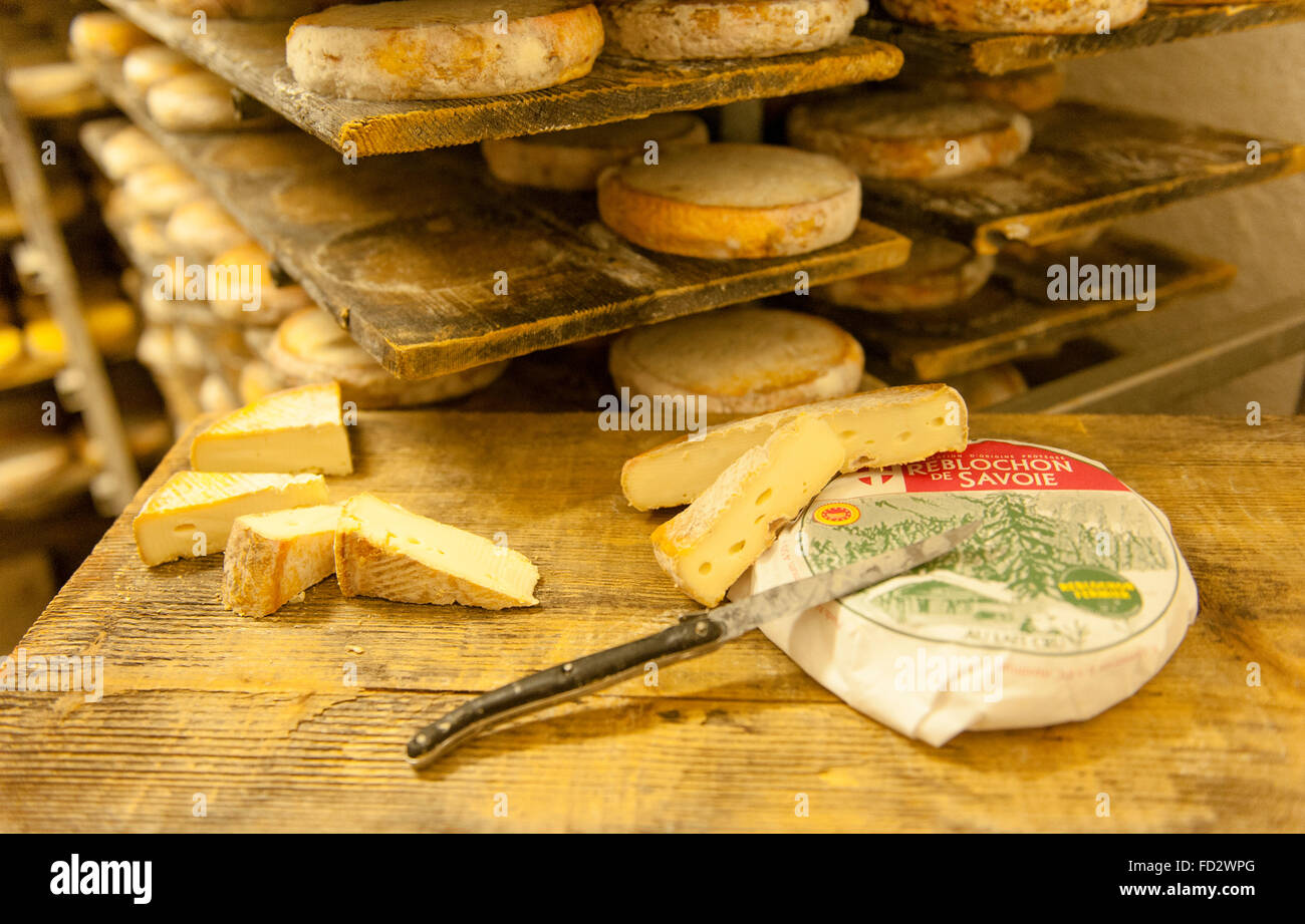 The Reblochon is an AOC cheese of Le Grand-Bornand in Haute-Savoie, French Alps, France - Stock Image