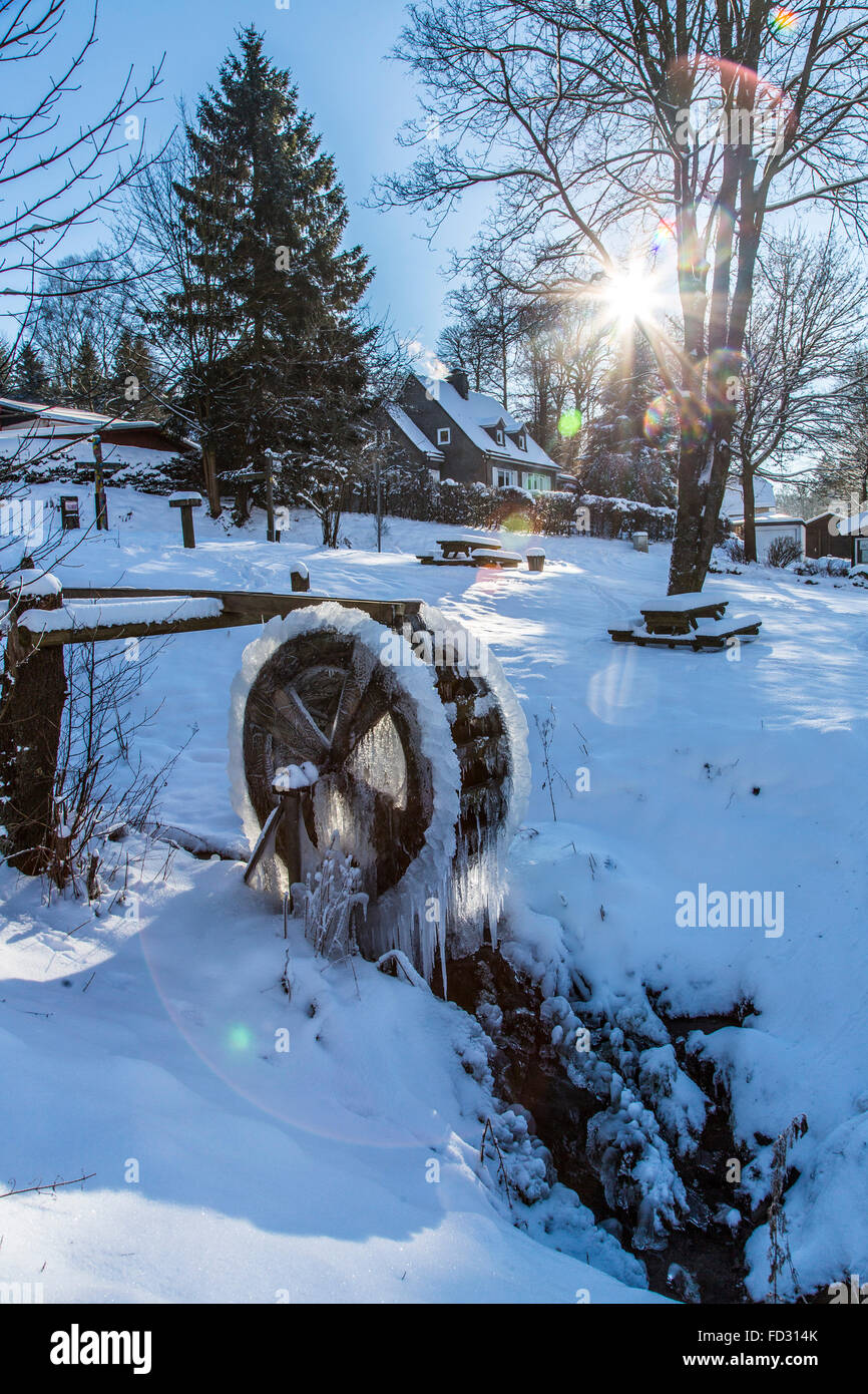 Wooden water wheel, frozen, ice sculptures, icicles along the wheel, Sauerland area, Germany - Stock Image