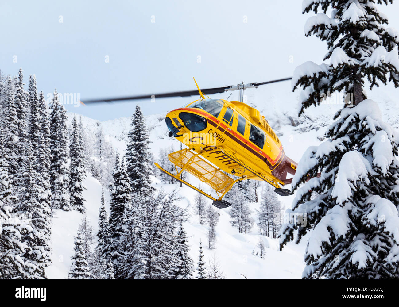 Helicopter flies back country skiers to remote Mount Carlyle Lodge; Selkirk Mountains; British Columbia; Canada - Stock Image