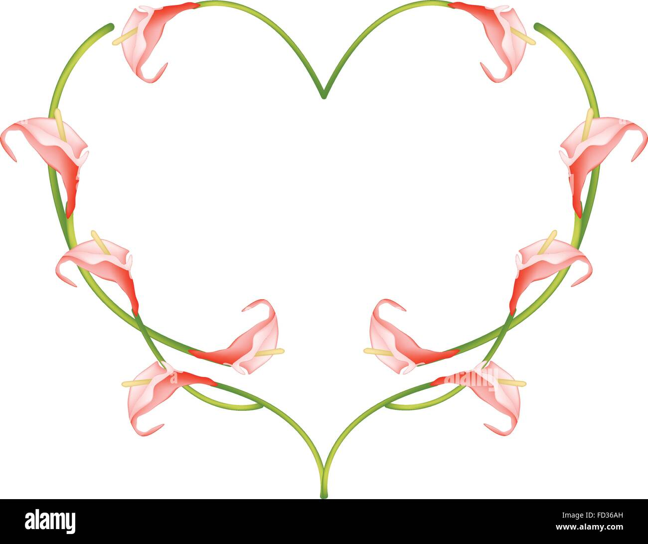 Love Concept, Illustration of Red Anthurium Flowers or Flamingo Flowers Forming in Heart Shape Isolated on White - Stock Vector