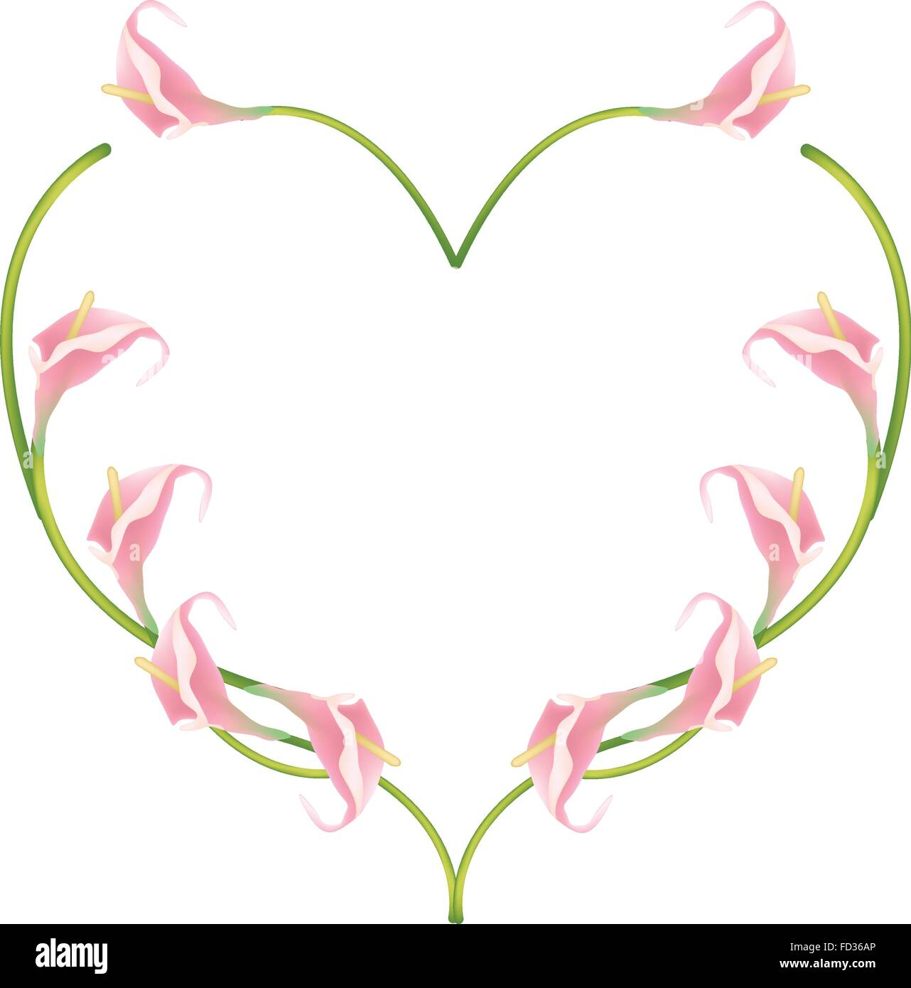 Love Concept, Illustration of Pink Anthurium Flowers or Flamingo Flowers Forming in Heart Shape Isolated on White - Stock Vector