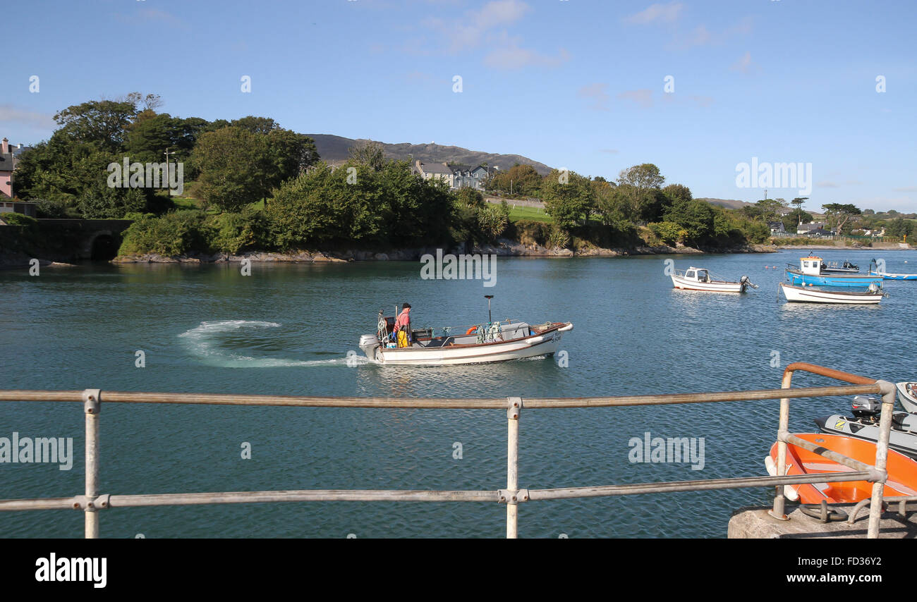 Fisherman in lobster boat leaving the harbour at Schull, West Cork, Ireland. Stock Photo
