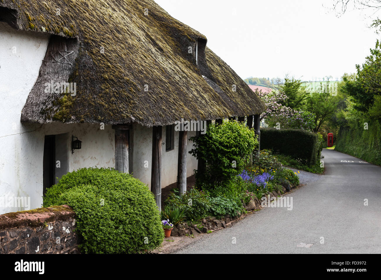 Dunchideock, Devon, UK, Traditional thatched cottage red phone box telephone kiosk - Stock Image