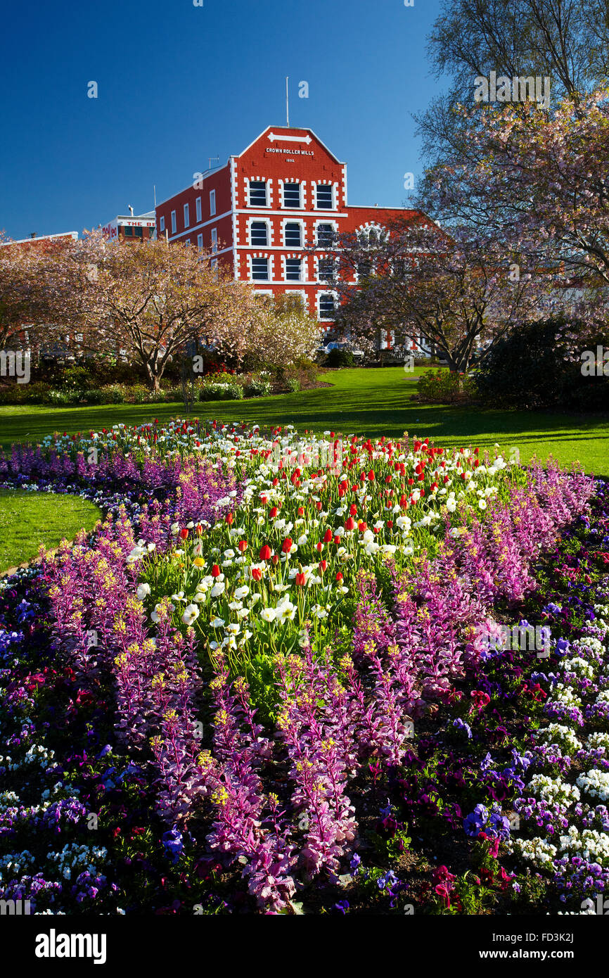 Spring flowers and historic Crown Mills Building, Dunedin, Otago, South Island, New Zealand - Stock Image