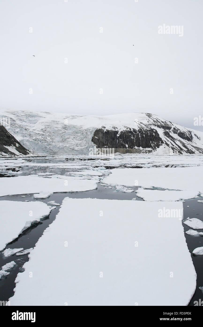 Svalbard, Spitsbergen, Alkefjellet. Glacier, cliffs and sea ice. - Stock Image