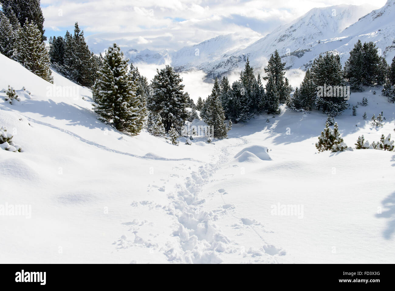 Wintersport Schneelandschaft Stock Photos Wintersport