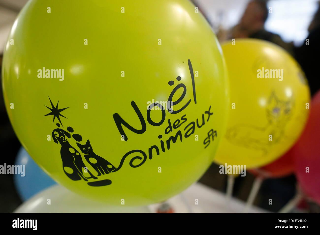 Animal protection organisation balloons. - Stock Image