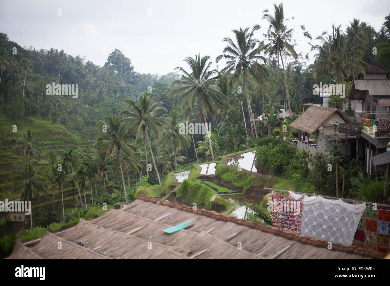 Elevated View Of Country Houses - Stock Image