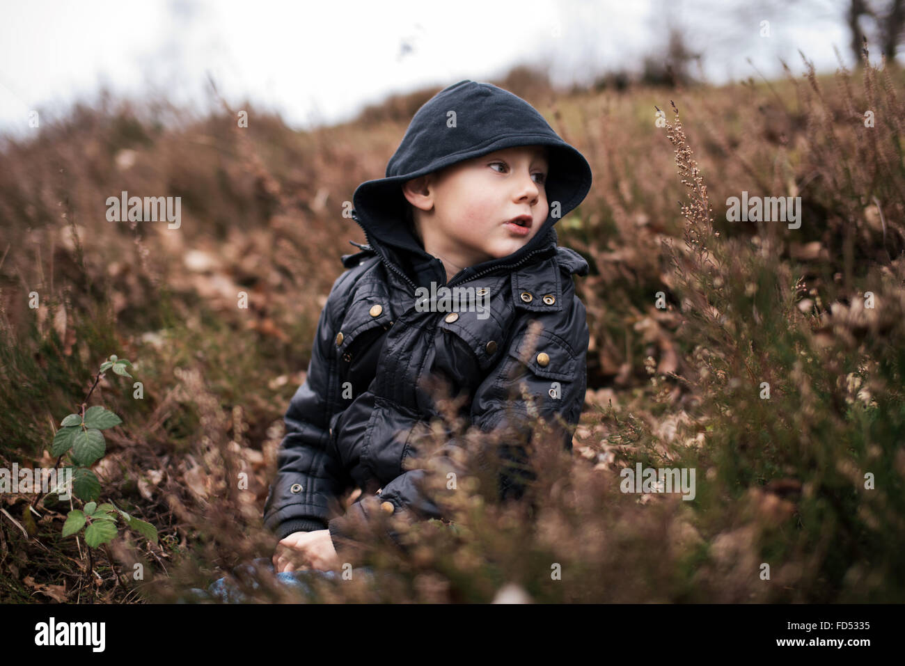 Little boy wearing hood sitting in nature - Stock Image