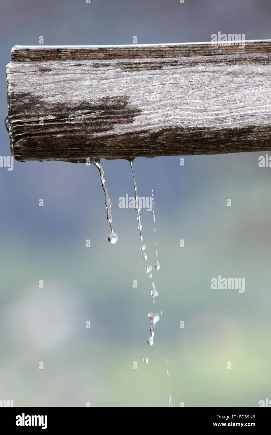 Water trickle. - Stock Image