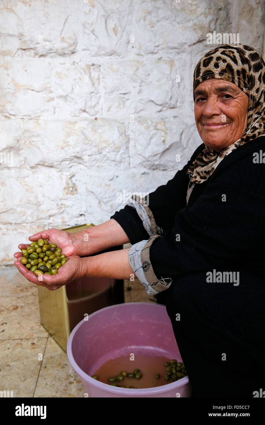 Wahija Foquha, a member of Anapta Consumption Cooperative. The cooperative received 15,000 Û from ACAD microfinance - Stock Image