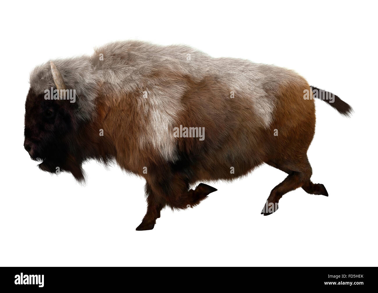 Bison Horn Cut Out Stock Images & Pictures - Alamy