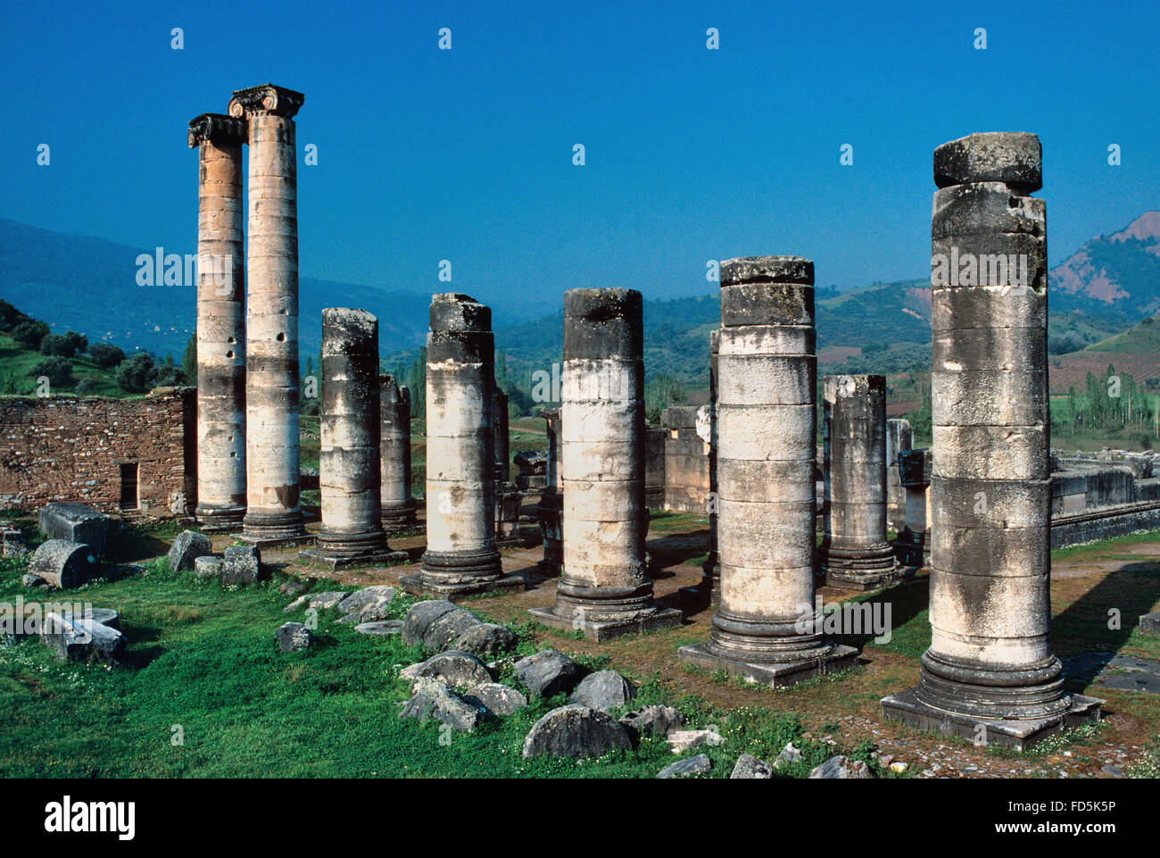 Columns of the Ancient Greek Temple of Artemis Sardis or Sardes Turkey - Stock Image