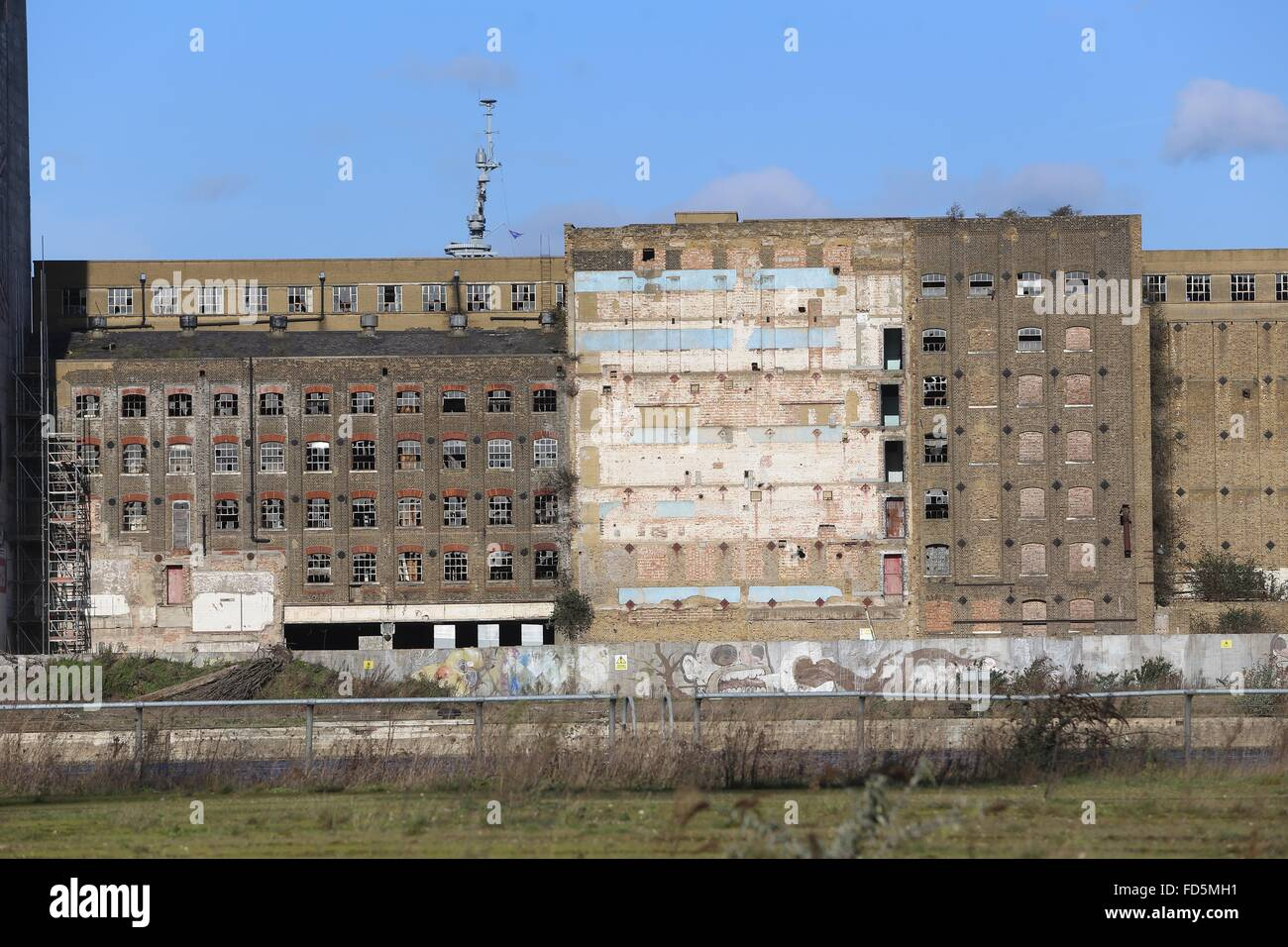 Millennium Mills Royal Victoria Dock Silvertown London flower mill derelict  smashed windows blue sky redevelopment - Stock Image