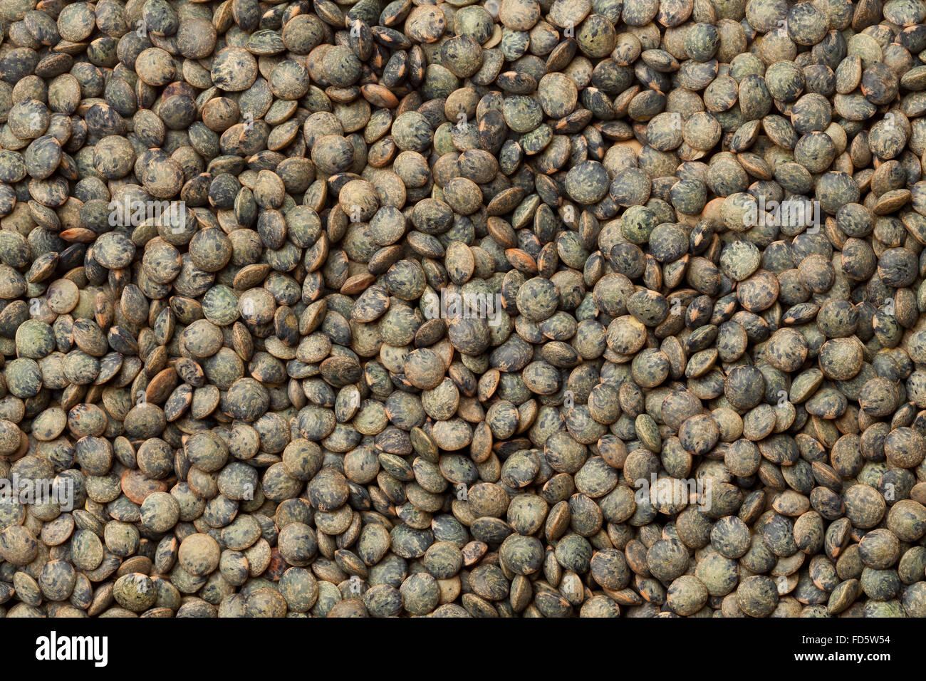 Dried Du Puy lentils full frame - Stock Image