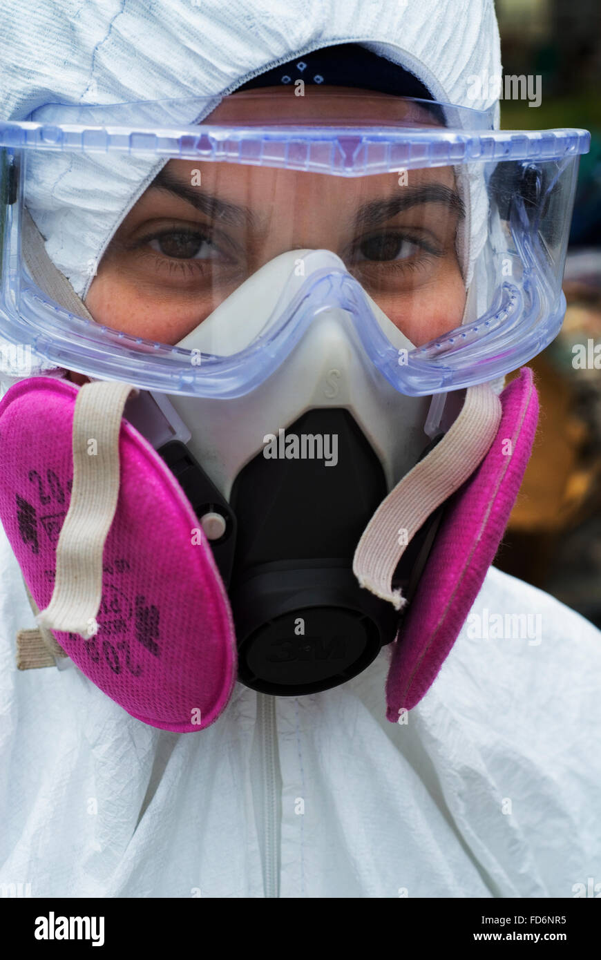 Volunteers in full protective gear strip heavily molded drywall and contents from Saint Bernard Parish homes. - Stock Image