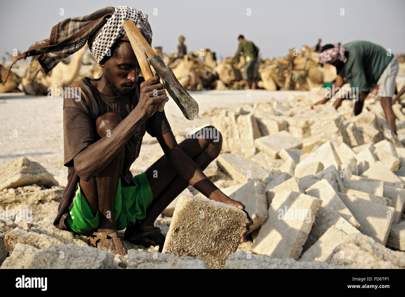 African workers extracting salt from lake Assale, Danakil depression, Afar Region, Ethiopia - Stock Image